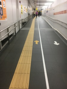 Guides for the blind. Luckily they are used to walking on the left side of the walkways.